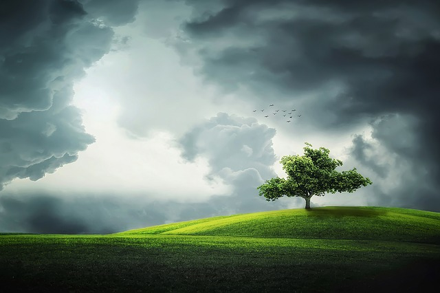 Four Seasons of Life & Leadership